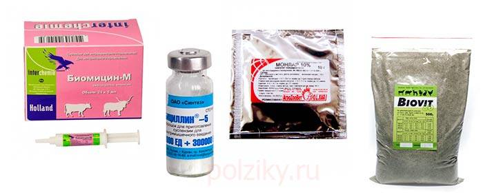 Антибиотики для подрощенных цыплят
