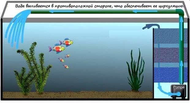 Фильтры для очистки воды в аквариуме