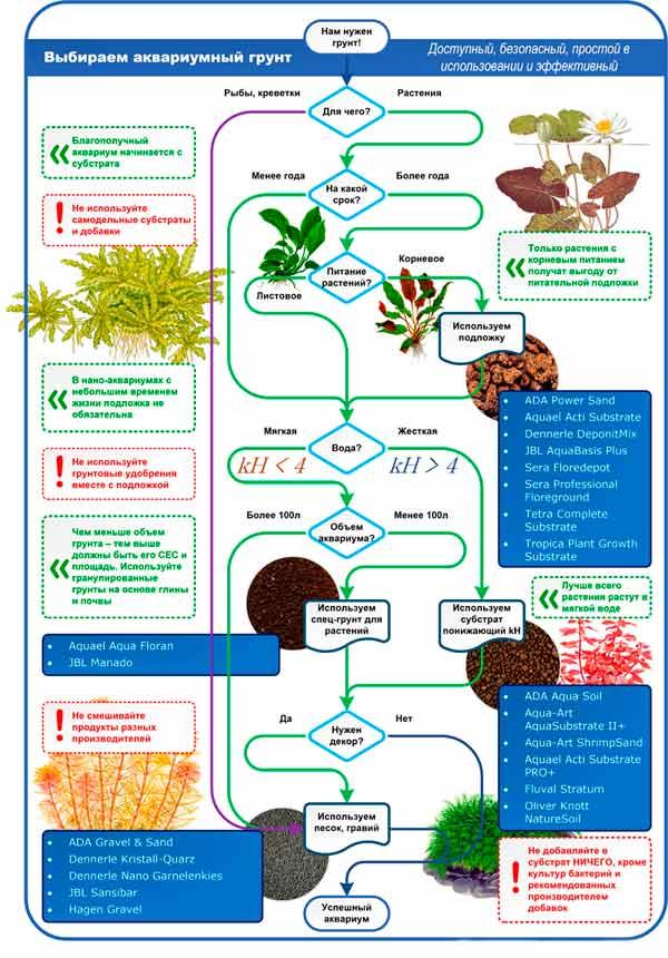 Грунт для аквариума с живыми растениями