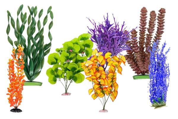 Растения в аквариуме виды