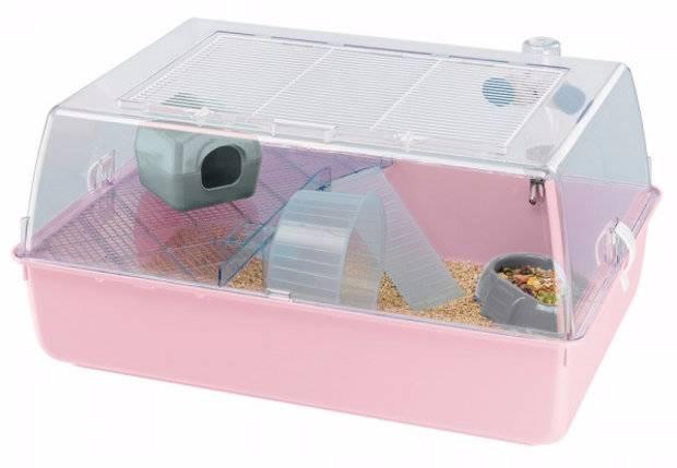 Размер клетки для морской свинки