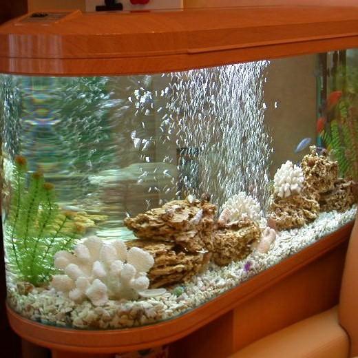 Воздух в аквариум